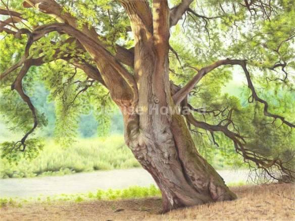 TreeOfStories