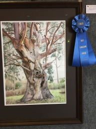 """Tree of Renewal"" won Best Landscape in the Cupertino Fall Festival"
